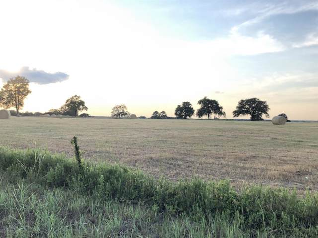 Tract 4 (11.4 ACRES) County Road 200, Giddings, TX 78942 (MLS #35872539) :: The Jill Smith Team
