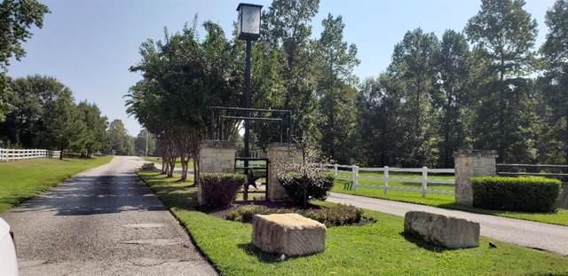 10 Double Creek Court, Willis, TX 77378 (MLS #35879491) :: The Queen Team