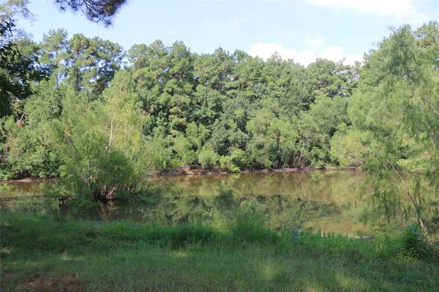 23405 Martha Williams Road, Montgomery, TX 77356 (MLS #35935358) :: Ellison Real Estate Team