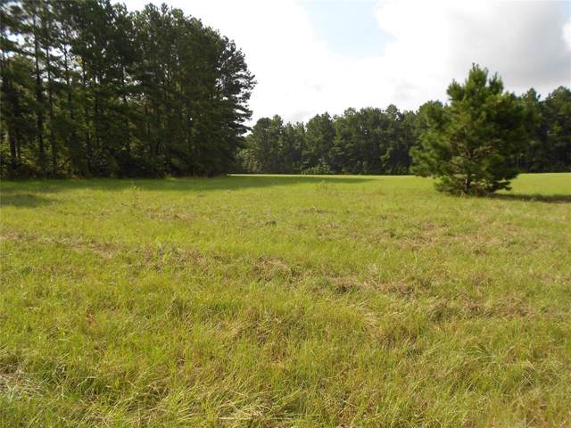 Horace Rd. Fm 358 - Antioch Or Possum Road, Groveton, TX 75845 (MLS #35940235) :: The Home Branch