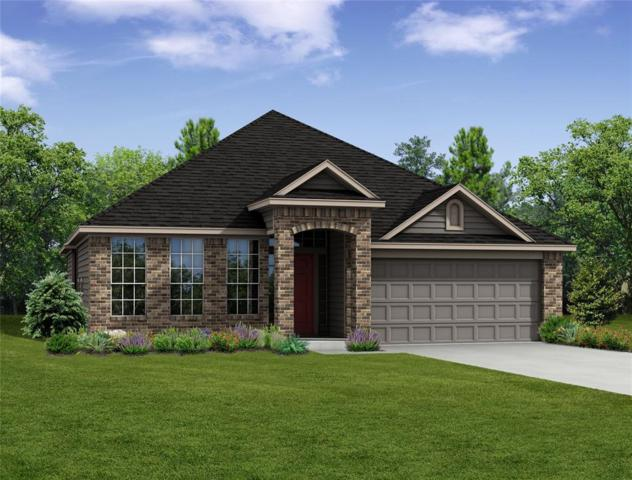 1031 Blue Moon Court, Conroe, TX 77301 (MLS #35960998) :: Christy Buck Team