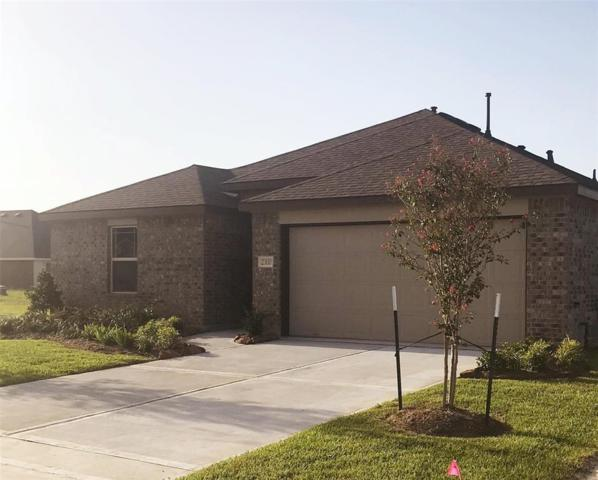 23110 Briarstone Harbor Trail, Katy, TX 77493 (MLS #35988909) :: The SOLD by George Team
