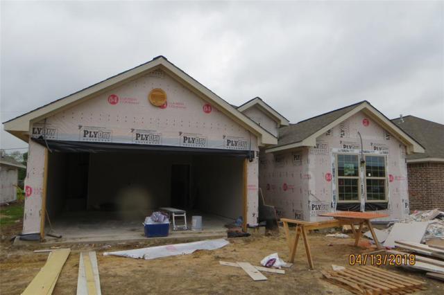 221 N 3 RD Street, La Porte, TX 77571 (MLS #3606846) :: Texas Home Shop Realty