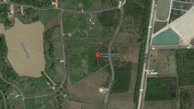22610 Chenango Lake Drive, Angleton, TX 77515 (MLS #36084229) :: My BCS Home Real Estate Group