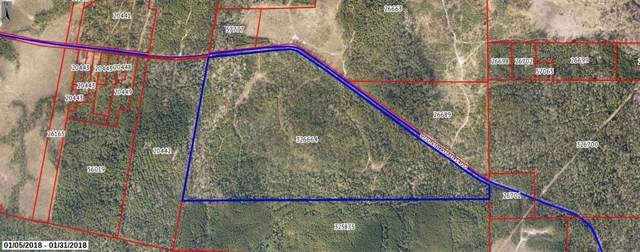 TBD County Rd 3400, Colmesneil, TX 75938 (MLS #36092371) :: The Parodi Team at Realty Associates
