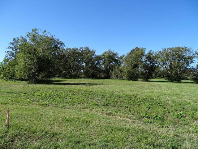 3518 Tankersley Circle, Rosharon, TX 77583 (MLS #36103064) :: The SOLD by George Team