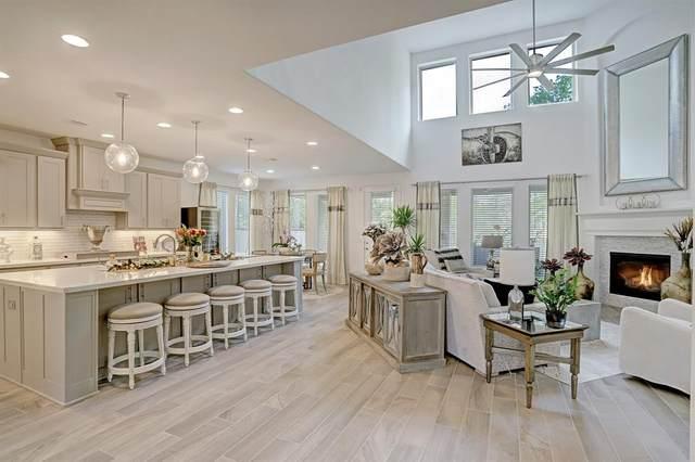 205 Bronze View Drive, Montgomery, TX 77316 (MLS #36163149) :: Giorgi Real Estate Group
