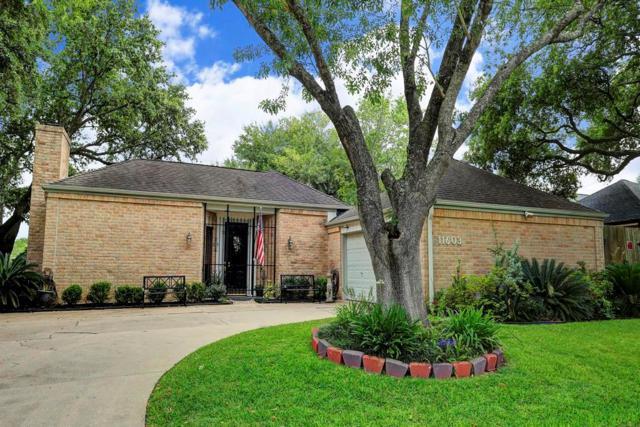 11603 Cedar Creek Drive, Houston, TX 77077 (MLS #36315092) :: See Tim Sell