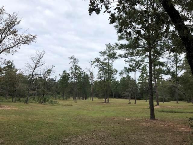 37072 Red Rock, Magnolia, TX 77355 (MLS #36323429) :: Green Residential