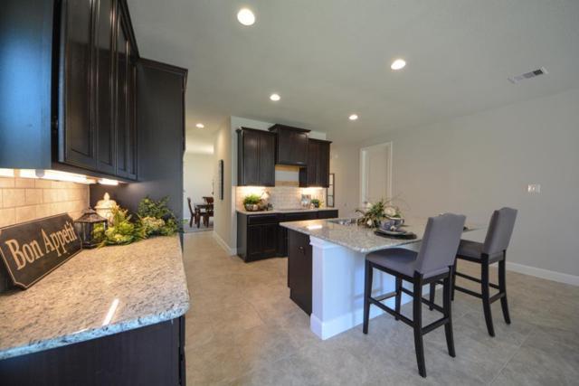 3210 Francisco Bay Place, Katy, TX 77494 (MLS #36341208) :: Caskey Realty