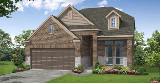 13513 Emerald Mallard Drive, Texas City, TX 77568 (MLS #36472833) :: The Queen Team