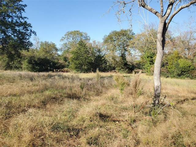 TBD Fairway Cir Circle, Hilltop Lakes, TX 77871 (MLS #36552011) :: Michele Harmon Team