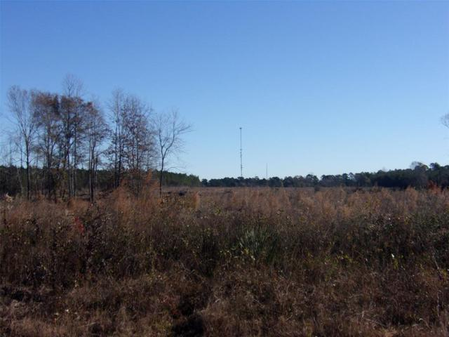 TBD Us Hwy 190 E, Livingston, TX 77351 (MLS #36562685) :: The SOLD by George Team