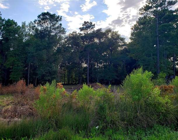 17790 Autumn Leaf Lane, New Caney, TX 77357 (MLS #36614651) :: TEXdot Realtors, Inc.