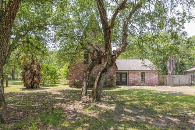 20702 Live Oak Drive, Damon, TX 77430 (MLS #36644390) :: Texas Home Shop Realty