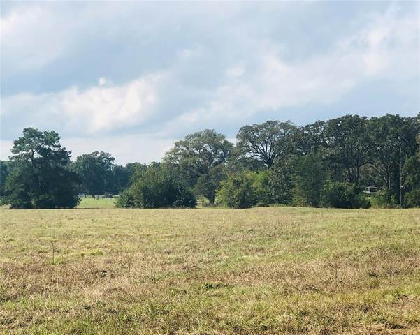 TBD Fm 2793, New Waverly, TX 77358 (MLS #36683559) :: The SOLD by George Team