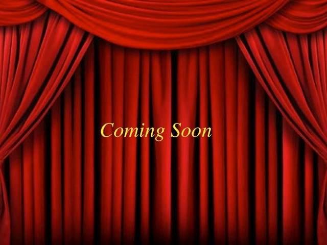 14815 Appaloosa Avenue, Houston, TX 77084 (MLS #36702299) :: Parodi Group Real Estate