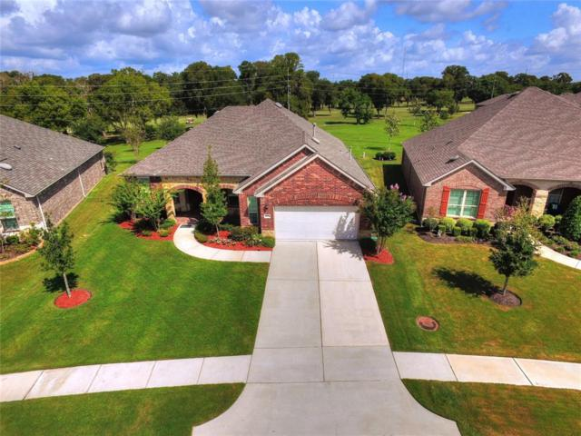 2815 Wild Olive Way, Richmond, TX 77469 (MLS #36729206) :: The SOLD by George Team