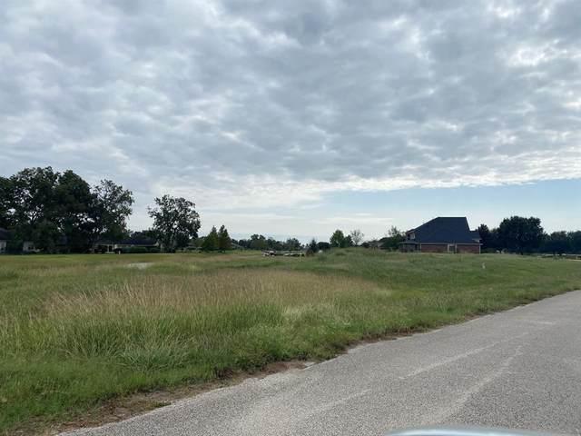 3526 River Ranch North Drive, Rosenberg, TX 77471 (MLS #36757533) :: TEXdot Realtors, Inc.