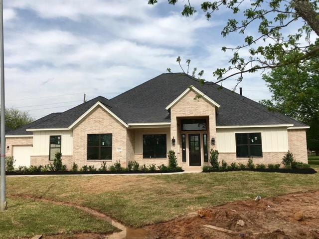 32715 Warbler Court, Fulshear, TX 77441 (MLS #36828306) :: The SOLD by George Team