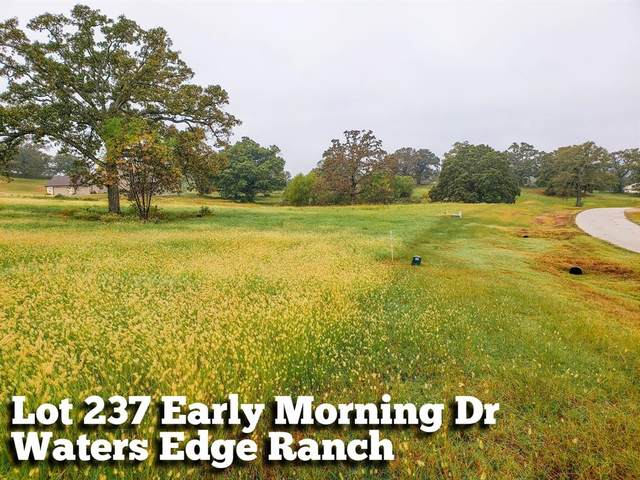 Lot 237 Early Morning Drive, Athens, TX 75752 (MLS #36839015) :: Michele Harmon Team