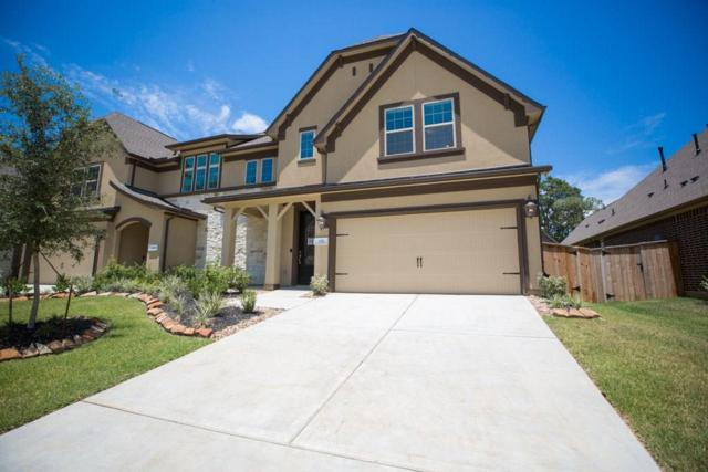137 Skybranch Drive, Conroe, TX 77304 (MLS #3685945) :: The Queen Team