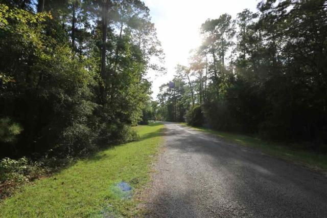 Lot 86 Gatewood Court, Brookeland, TX 75931 (MLS #36926296) :: Connect Realty