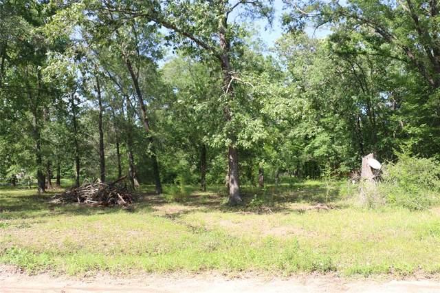 235 Panther Lane, Livingston, TX 77351 (MLS #36969695) :: Keller Williams Realty