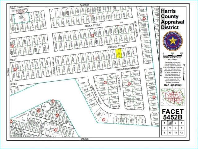 00 Jezebel Street, Houston, TX 77021 (MLS #36994318) :: Texas Home Shop Realty