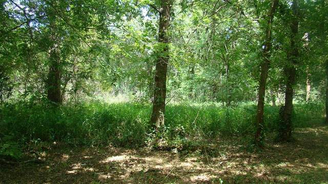 1311 Woodvine, Friendswood, TX 77546 (MLS #37025321) :: Guevara Backman