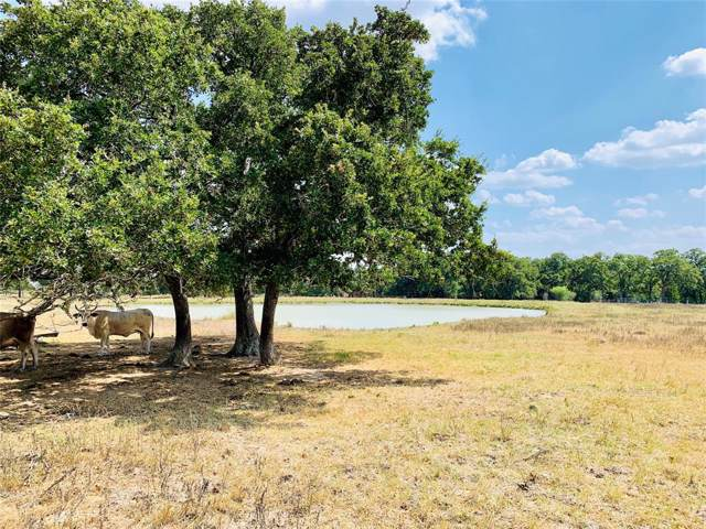 2245 Oakland Road, Schulenburg, TX 78956 (MLS #37190555) :: Connect Realty