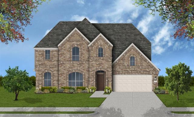 19907 Carlisle Glen Court, Richmond, TX 77407 (MLS #37214685) :: Connect Realty
