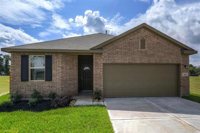 14449 Weir Creek Road, Willis, TX 77318 (MLS #37220577) :: Giorgi Real Estate Group