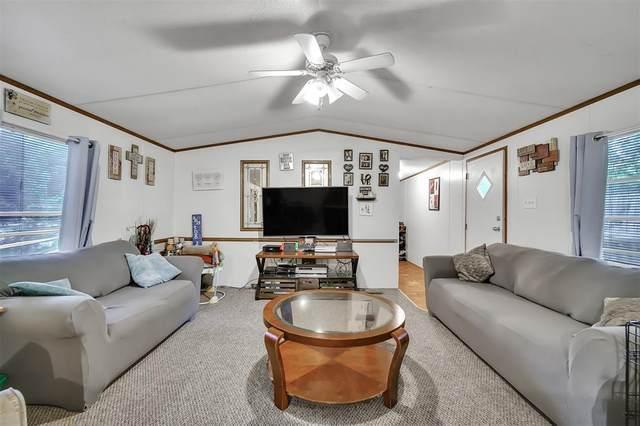 8894 Old Creek Street, Willis, TX 77318 (MLS #37270544) :: Rachel Lee Realtor