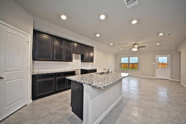 519 Green Clover Lane, Rosharon, TX 77583 (MLS #37284658) :: The Home Branch