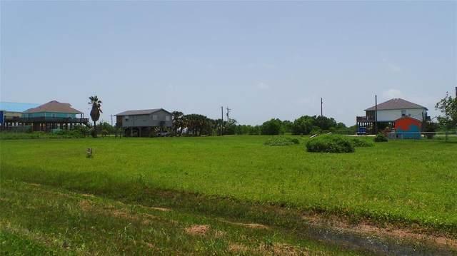 29 Salt Cedar, Port Bolivar, TX 77650 (MLS #3755842) :: The Freund Group
