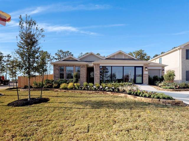 119 Rogerdale River Drive, Magnolia, TX 77355 (MLS #37579386) :: Connect Realty