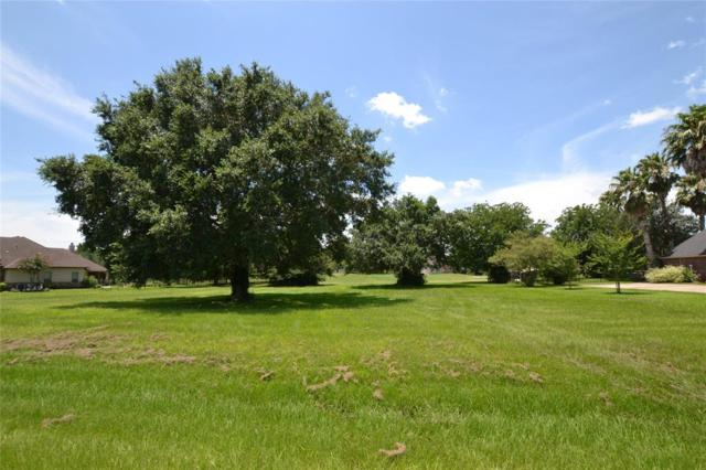 4015 Wentworth Drive, Fulshear, TX 77441 (MLS #37581482) :: The SOLD by George Team