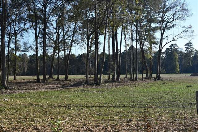 TR 3 County Road 2225, Cleveland, TX 77327 (MLS #3763621) :: The Bly Team