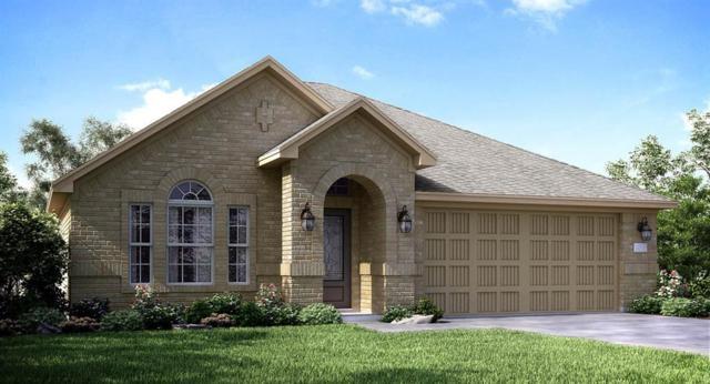 2407 Dovetail Park Lane, Rosenberg, TX 77469 (MLS #37639290) :: Team Sansone