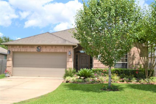 2005 Plum Falls Lane Lane, Pearland, TX 77581 (MLS #37752415) :: Texas Home Shop Realty