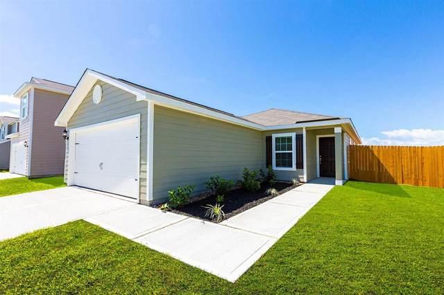 8414 Hannah Road, Cove, TX 77523 (MLS #37814237) :: The Sansone Group