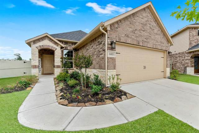 16805 Pink Wintergreen Drive, Conroe, TX 77385 (MLS #37834643) :: Rachel Lee Realtor