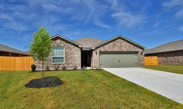 10781 Castle Rock Drive, Cleveland, TX 77328 (MLS #3787389) :: The SOLD by George Team