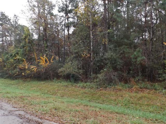 16519 Mustang Trail Drive, Magnolia, TX 77355 (MLS #37926872) :: Grayson-Patton Team