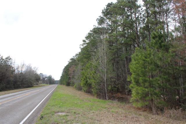 15.2 ac County Road 66, Jasper, TX 75951 (MLS #37999943) :: Caskey Realty