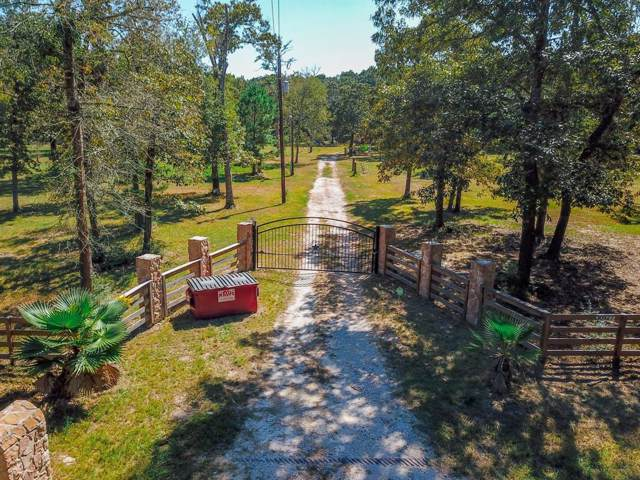 30927 Lake Road, Waller, TX 77484 (MLS #38009610) :: The SOLD by George Team