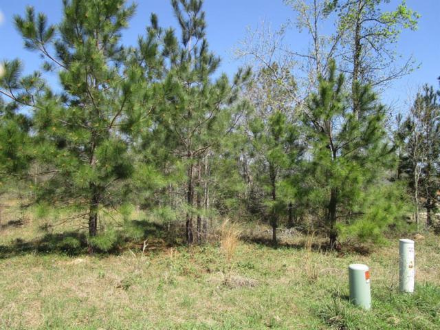 393 Ridgelake Scenic Drive, Montgomery, TX 77316 (MLS #38011968) :: Fairwater Westmont Real Estate