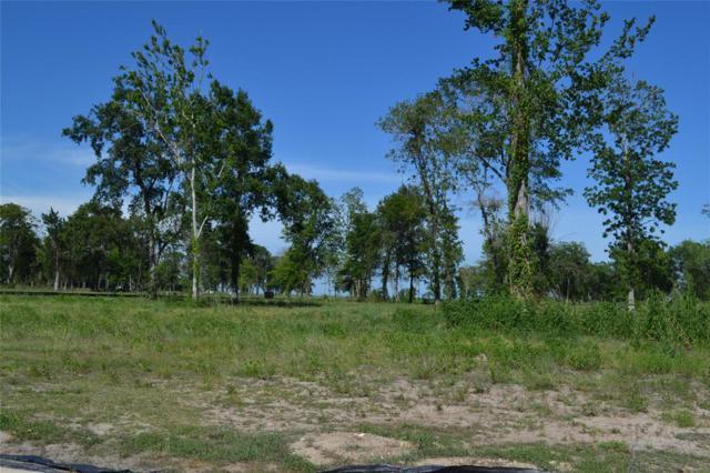 0 Thunder Bay, Baytown, TX 77523 (MLS #38013885) :: NewHomePrograms.com LLC