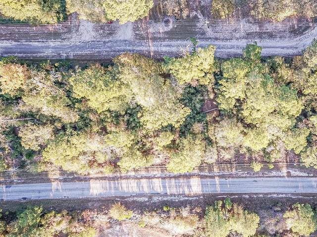 Lot 6 S Estate Drive, Trinity, TX 75862 (MLS #38136781) :: Lerner Realty Solutions
